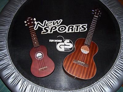 wie wird eine ukulele gestimmt